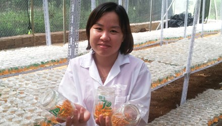 Nguyen Thi Hong, 35, cultivates a valuable medicinal herb for sale at competitive prices in the domestic and export markets.