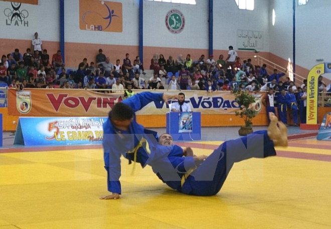 Vietnamese fighters to defend vovinam title