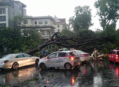 Ha Noi forms storm evacuation plan