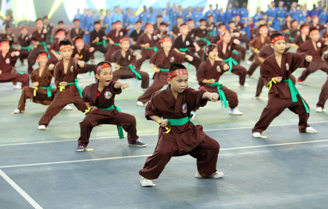 Martial arts fest kicks off in Ha Noi