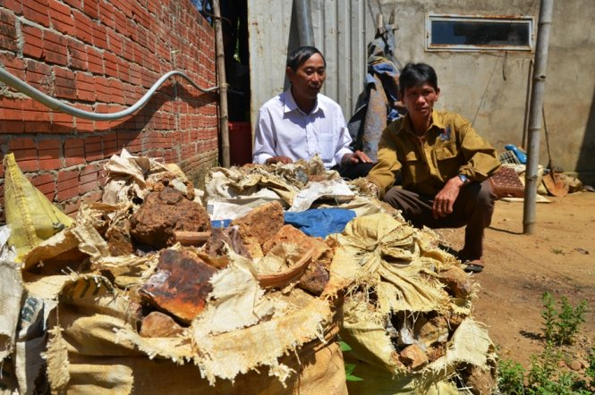Quang Nam authorities destroy illegal gold ore