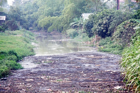 Food processing pollutes villages