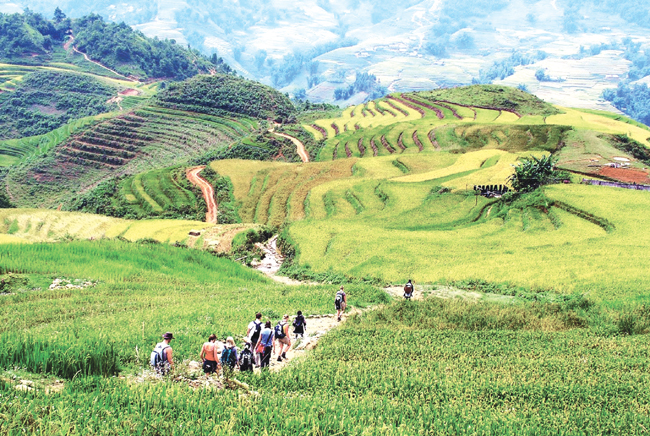 Lao Cai braces for 'tourism year