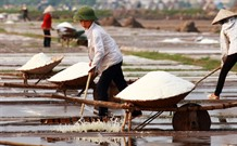 Salt farmers struggle with weak crops